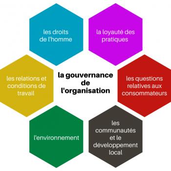 la gouvernance de l'organisation